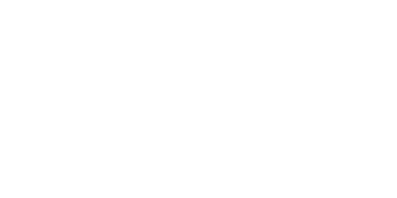 logo Travel Ledger